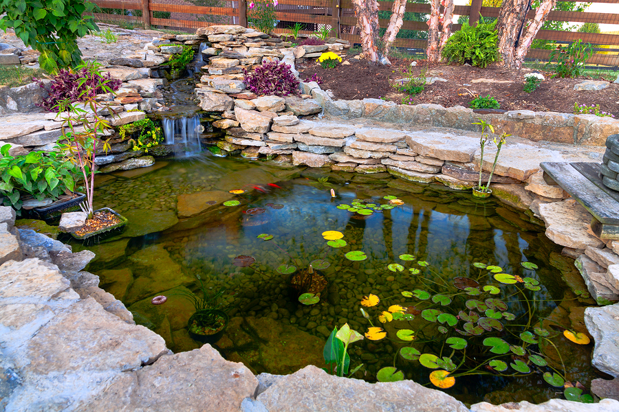 koi pond in your home