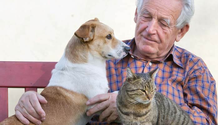 Pets are Helpful in Assisted Living
